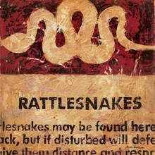 Rattlesnakes Canvas Wall Art