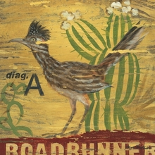 Roadrunner Canvas Wall Art