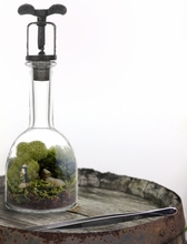 Romantica Terrarium DIY Kit