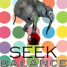 Seek Balance Canvas Art