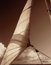 Sepia Tone Sailboat II Wall Art