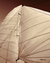 Sepia Tone Sailboat III Wall Art