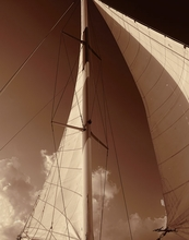 Sepia Tone Sailboat IV Wall Art