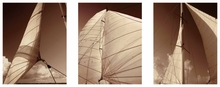 Sepia Tone Sailboat Triptych Wall Art