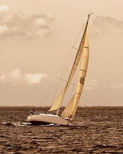 Sepia Tone Sailboat V Wall Art