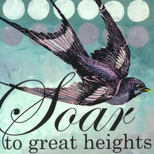 Soar to Great Heights Canvas Art