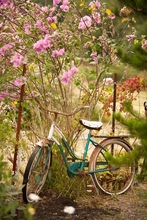 Vintage Bike with Flowers Wall Art
