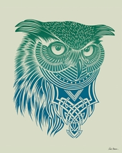 Warrior Owl Canvas Wall Art