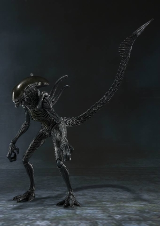 AVP Alien Warrior S.H. Monster Arts Action Figure