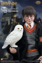 Harry Potter and the Sorcerers Stone 1/6 Scale Figure - Free U.S. Shipping!