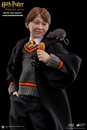 Harry Potter and the Sorcerers Stone Ron Weasley 1/6 Scale Figure