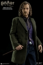 Harry Potter Sirius Black 1/6 Scale Figure