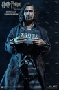 Harry Potter Sirius Black Prisoner Version 1/6 Scale Figure