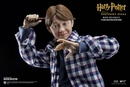Harry Potter and the Sorcerer's Stone Ron Weasley Casual Wear 1/6 Scale Figure