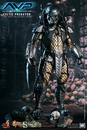 Hot Toys Celtic Predator 1/6 Scale Figure