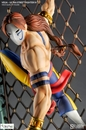 Ultra Street Fighter IV Vega Figure
