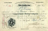 Copper Knob Mining Co Stock 1881