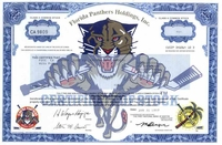 Florida Panthers Holdings Stock 1997