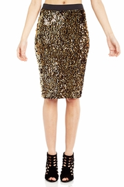 A Vision of Ecstasy Sequined Skirt