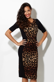 Fiercely Fab Animal Hourglass Dress with Necklace