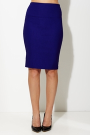 Pens and Pencil High Waist Skirt in Royal