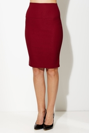 Pens and Pencil High Waist Skirt in Wine