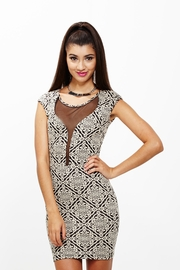 Sheer Insanity Jacquard Dress