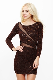 Sparkle in His Eye Metallic Sequin Dress