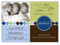 Darling Divide Photo Triplet Boys Birth Announcement