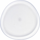 Pebble Clear Plastic Dinner Plate