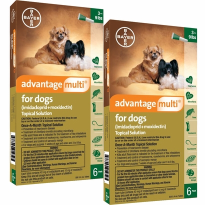 Advantage Multi For Dogs Used On Cats