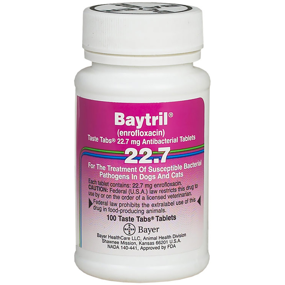 What Does Baytril  Treat In Dogs