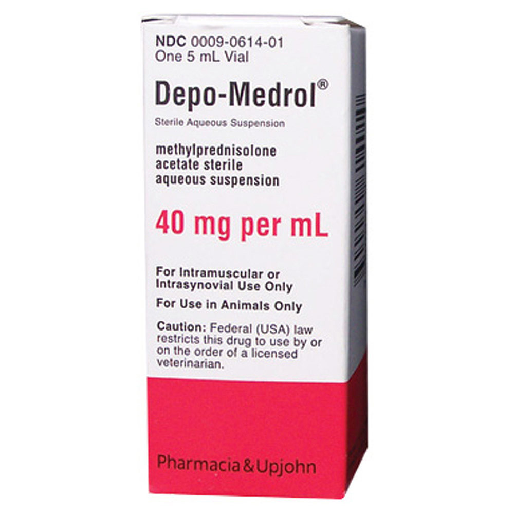 Medrol Dogs Allergies
