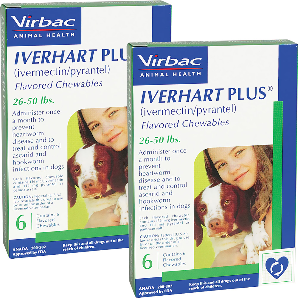 Iverhart Plus For Dogs Reviews