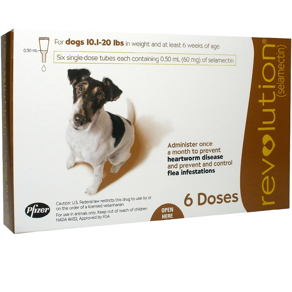 Revolution For Dogs | Dose My Pet