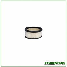 Forester Replacement Briggs & Stratton Air Filter - 393725