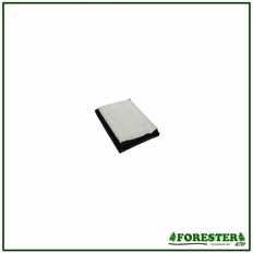 Forester Replacement Briggs & Stratton Air Filter - 805113