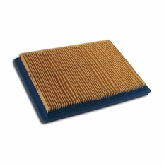 Forester Replacement Briggs & StrattonAir Filter - 397795s