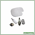 Forester Tune-Up Kit for Poulan Chainsaws