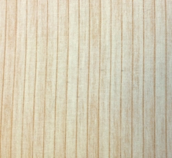 RJR Fabrics - FLOOR PLANKS (Tan)