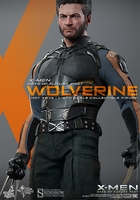 Hot Toys X-Men Days of Future Past Wolverine 1/6 Scale Figure