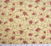 Cotton Voile Peach/Pink Print 2G061