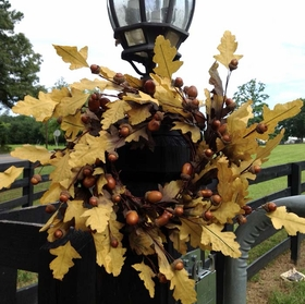 Yellow Oak Leaf Acorn Wreaths  Set of Three Wreaths