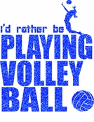I'd rather be volleyball transfer