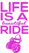 Life is a beautiful ride transfer