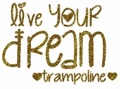 Live Your Dream Trampoline transfer
