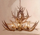 Mule Deer 6-Lamp Antler Chandelier - Medium