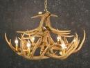 Whitetail Twelve Antler Chandelier
