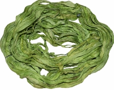 Sari SILK 100g Ribbon Yarn Grass Green