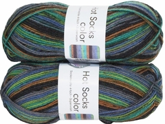 100g GERMAN Silky Self Striping SuperWash SOCK Yarn Hot Color Grundl 405